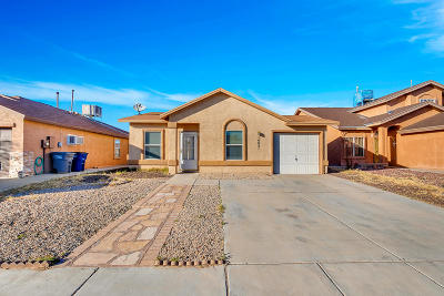 Single Family Home For Sale: 14021 Jason Crandall Drive
