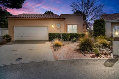 El Paso Single Family Home For Sale: 1067 Los Jardines Circle
