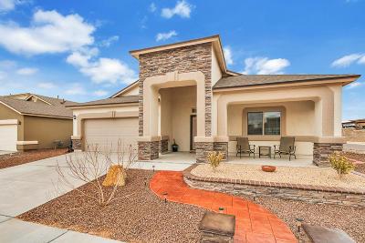 Single Family Home For Sale: 14829 Hunters Grove Avenue