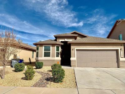 Single Family Home For Sale: 14681 Igor Kaleri Avenue