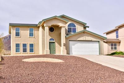 Single Family Home For Sale: 8813 Polaris Street