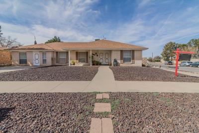 El Paso Single Family Home For Sale: 6949 Granero Drive
