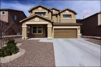Single Family Home For Sale: 14673 Meadow Lawn