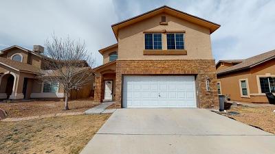 El Paso Single Family Home For Sale: 2857 Magic Rock Drive