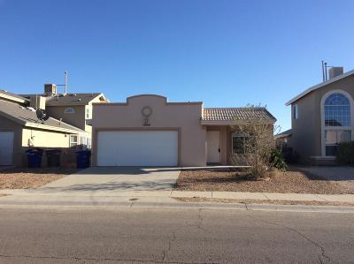 Single Family Home For Sale: 14008 Tierra Leona Drive