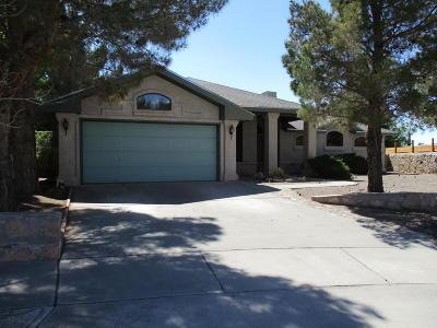 Horizon City Single Family Home For Sale: 405 Jeweled Desert Drive