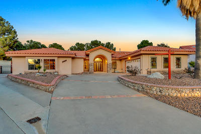 Single Family Home For Sale: 11917 Paseo Festivo Court
