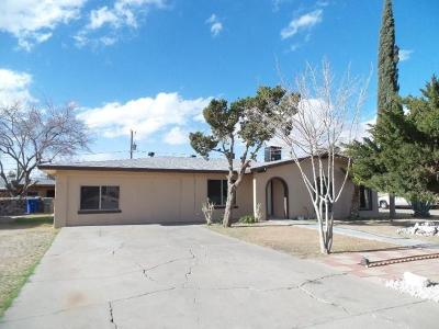 El Paso Single Family Home For Sale: 625 Ramsgate Road