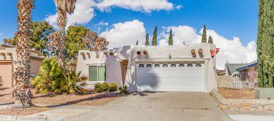 Vista Hills Single Family Home For Sale: 11593 Spencer Drive