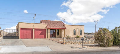 El Paso Single Family Home For Sale: 1600 Dale Douglas Drive