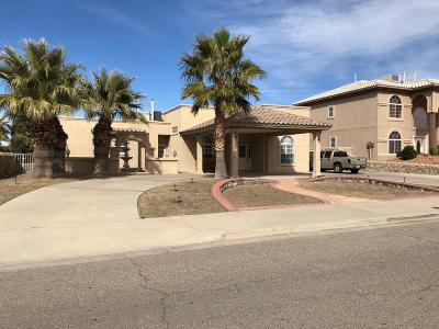 El Paso Single Family Home For Sale: 12243 Chisholm Pass Drive