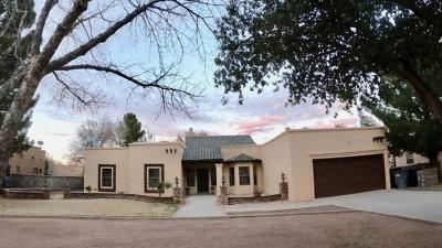 El Paso Single Family Home For Sale: 705 Rosinante Road
