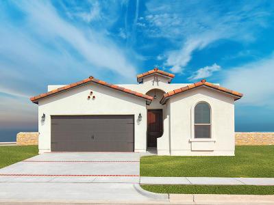 El Paso TX Single Family Home For Sale: $171,950