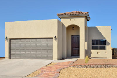 El Paso Single Family Home For Sale: 10096 Hueco Junction Road
