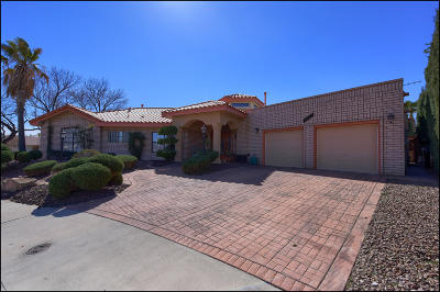 El Paso Single Family Home For Sale: 1913 Gus Moran Street