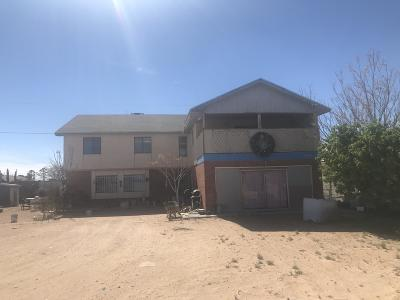El Paso Single Family Home For Sale: 12816 Gambusino Avenue