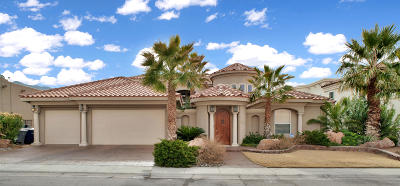 El Paso Single Family Home For Sale: 1160 Calle Lomas Drive