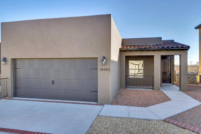 El Paso Single Family Home For Sale: 10124 Hueco Junction Road