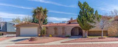 El Paso Single Family Home For Sale: 6405 Los Robles Drive