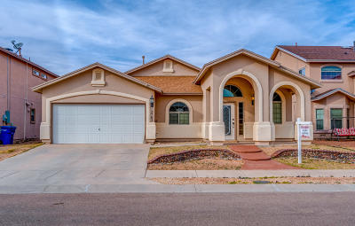 El Paso Single Family Home For Sale: 12705 Tierra Alexis Drive