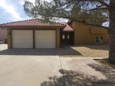 El Paso Single Family Home For Sale: 1435 Sun Meadow Lane