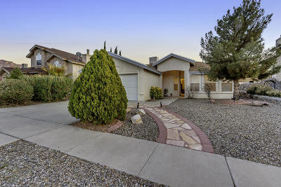 El Paso Single Family Home For Sale: 6552 Dakota Ridge Drive