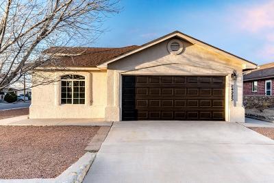 Horizon City Single Family Home For Sale: 14225 Desert Ash Drive
