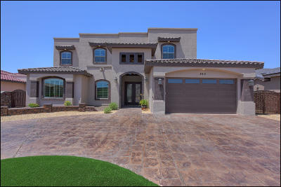 El Paso Single Family Home For Sale: 863 Colonial