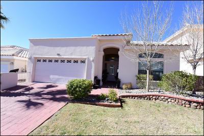 El Paso Single Family Home For Sale: 1513 Via Appia Street