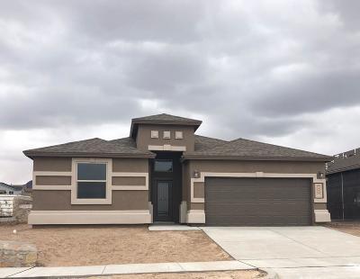 El Paso TX Single Family Home For Sale: $200,125