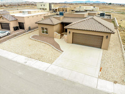 El Paso TX Single Family Home For Sale: $249,900