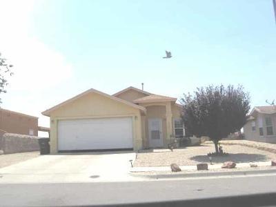 Horizon City Single Family Home For Sale: 717 Desert Silver Drive