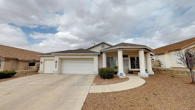 Canutillo Single Family Home For Sale: 825 Phil Hansen Drive