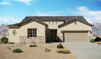 El Paso Single Family Home For Sale: 484 Bingley Place