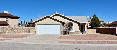 Horizon City Single Family Home For Sale: 14349 Desert Shadow Drive