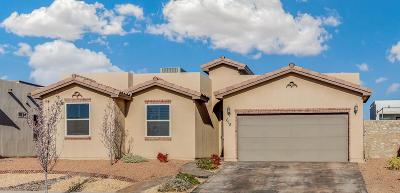 El Paso Single Family Home For Sale: 618 Billston