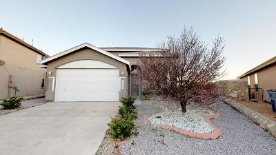 Single Family Home For Sale: 11301 Kiko Duran