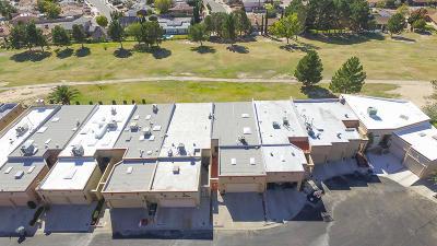 Vista Hills Single Family Home For Sale: 11224 Enid Wilson Lane