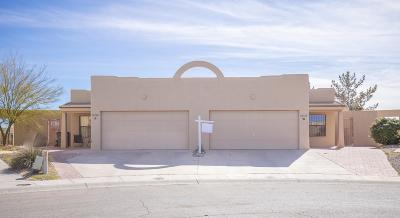 El Paso Single Family Home For Sale: 12116 Hunter Will Way #A &