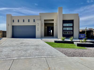 El Paso Single Family Home For Sale: 1004 Henley