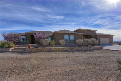 El Paso Single Family Home For Sale: 5150 Desert Willow Drive