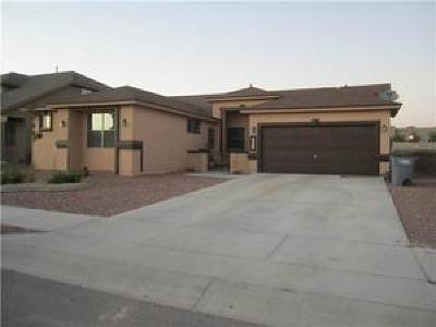 El Paso Single Family Home For Sale: 14429 Lacota Point Drive