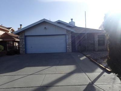 Vista Hills Single Family Home For Sale: 11618 Clear Lake