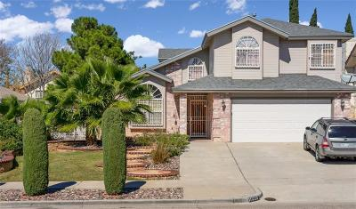 El Paso Single Family Home For Sale: 11229 Starfish Court