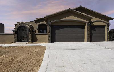 El Paso Single Family Home For Sale: 2805 Tierra Vigo