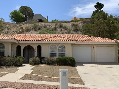 El Paso Single Family Home For Sale: 856 Hempstead Drive