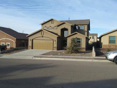 Horizon City Single Family Home For Sale: 343 Emerald Woods Street