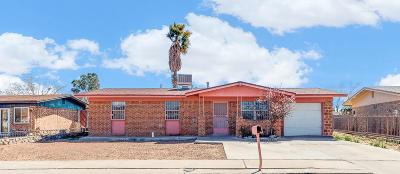 El Paso Single Family Home For Sale: 8710 Plains Drive