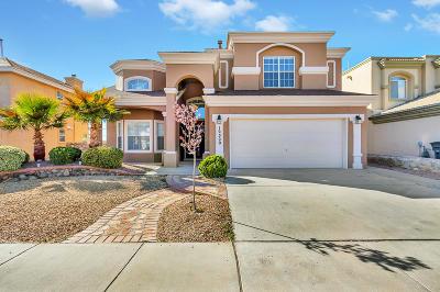 El Paso Single Family Home For Sale: 12320 Tierra Arroyo Drive