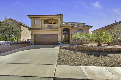 El Paso Single Family Home For Sale: 6362 Franklin View Drive